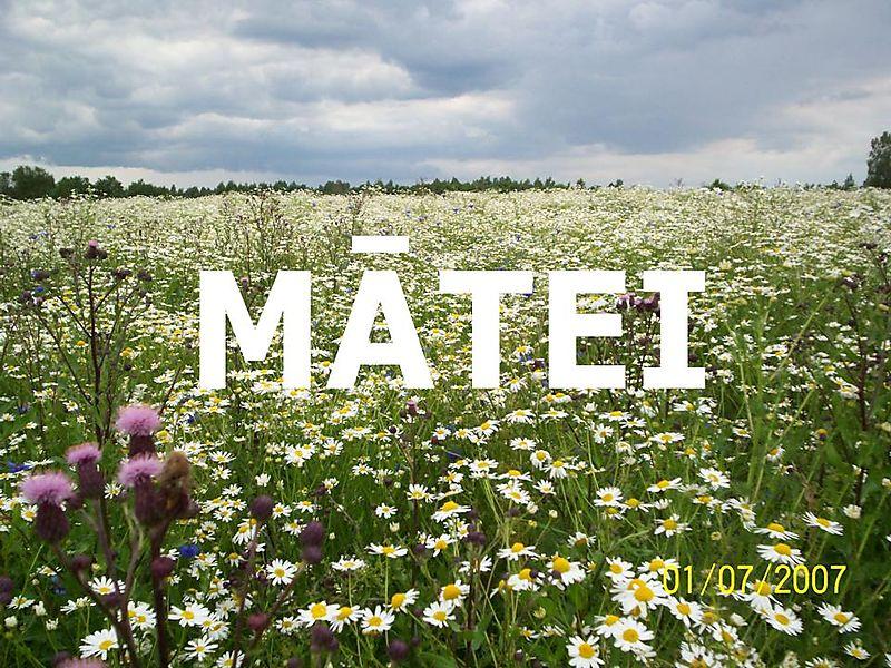 MĀTEI