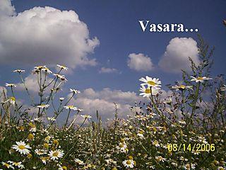Vasarai...