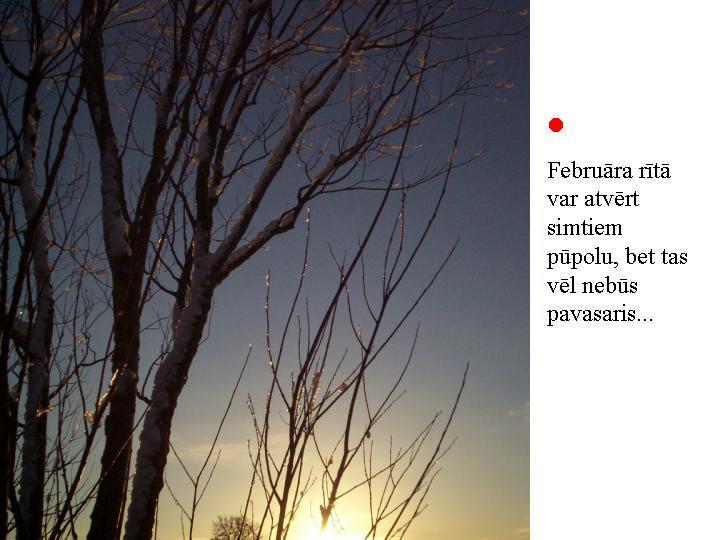 Februāra rītā...