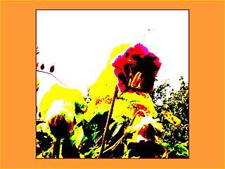 Mīklainais zieds...