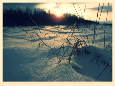 saulriets janvārī