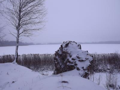 Pilsdrupu fragments Viļakas ezera salā. 14. janvāris 2017