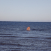 21. oktobrī jūrā