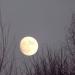 Mēness 31. decembra vakarā