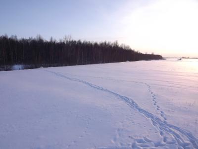 Pēdu ceļi sniegā