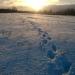 Pēdas sniegā 26. decembrī