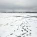 Viļakas ezers Vecgada dienā