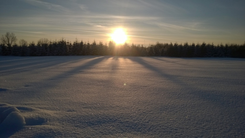 Ziemas saulē