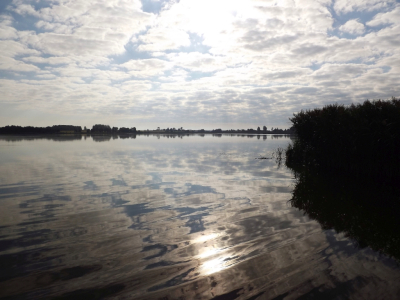 1. augusta rīts ezerā