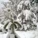 Zem sniega smaguma 26. decembrī