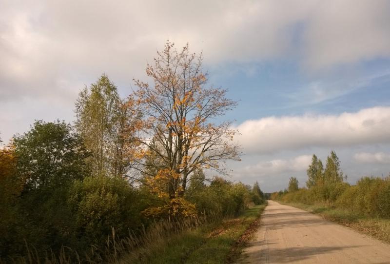 Ceļmalas kļava 30. septembrī-1